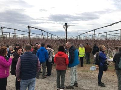 Alcarràs celebra la primera ruta de patrimoni 'Alcarràs Florit' de l'any