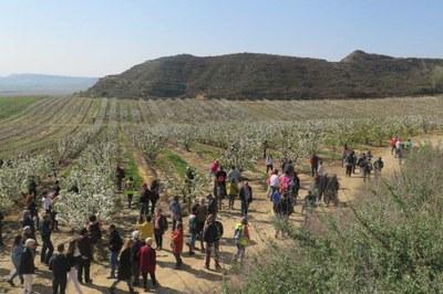 Alcarràs programa la 5a edició de la ruta de patrimoni 'Alcarràs Florit'